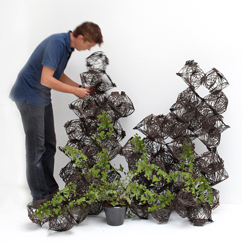 tumbleweed fait grimper les plantes office et culture. Black Bedroom Furniture Sets. Home Design Ideas