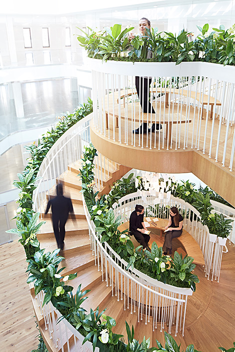 Living Staircase